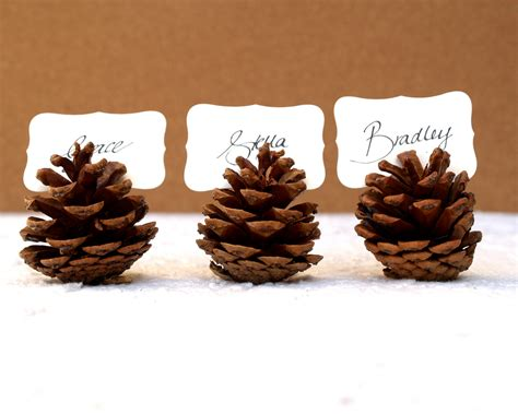 pine cone table woodland wedding place cards 20 pine cone holder table