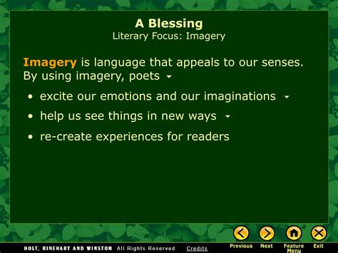 themes of a blessing by james wright ppt a blessing by james wright powerpoint presentation