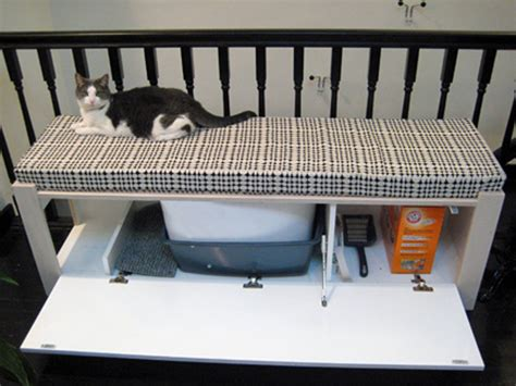 cat bench litter box diy ideas for hiding the litter box a pet sitting and
