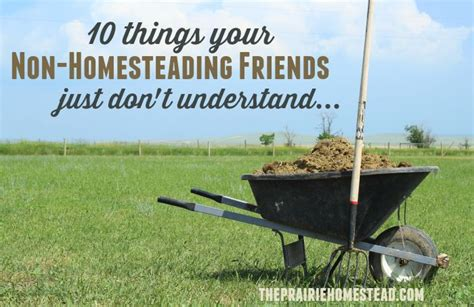 1000 images about homesteading self sufficiency on