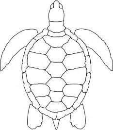 turtle shell template turtle outline clip at clker vector clip