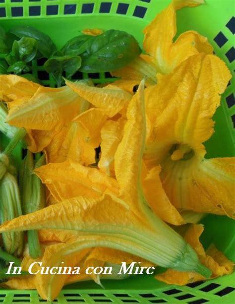 fior di zucchine in pastella frittelle fiori di zucchine in pastella gusto e sapore