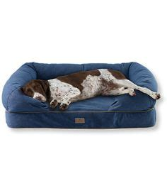 ll bean dog couch products i love on pinterest 46 pins