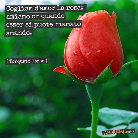 fiori aforismi torquato tasso cogliam d la rosa amiamo or quando