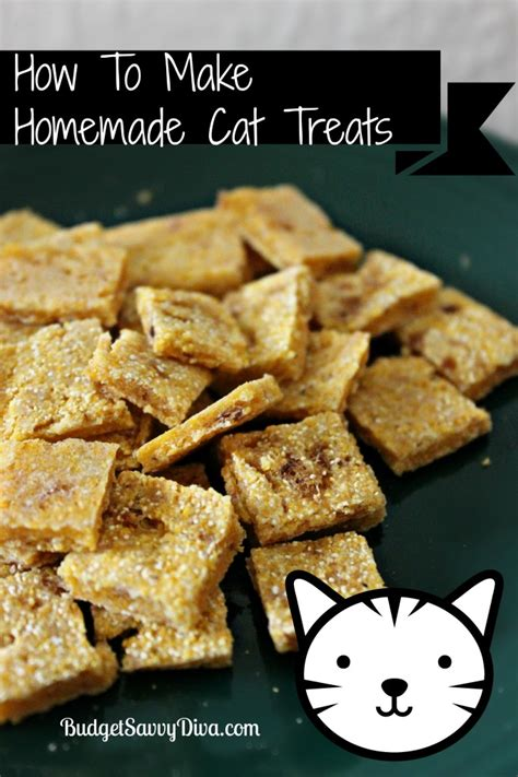 Handmade Treats - how to make cat treats recipe budget savvy