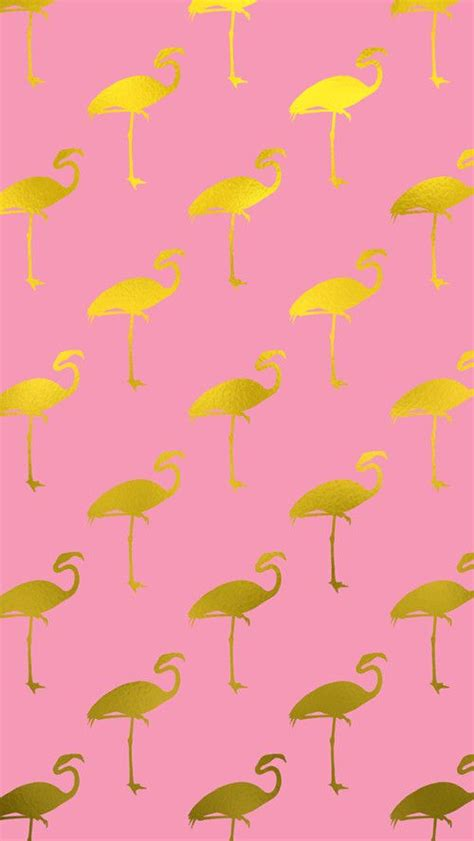 flamingo desktop wallpaper books collection 17 wallpapers