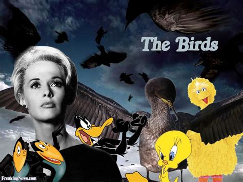 vintage 1960s halloween film the birds the birds images