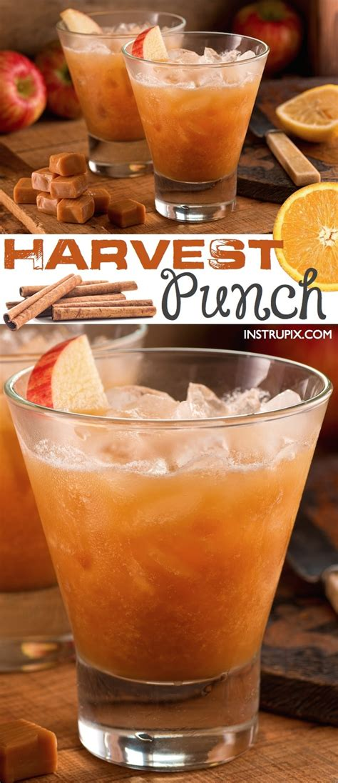 fall punch recipe  parties instrupix