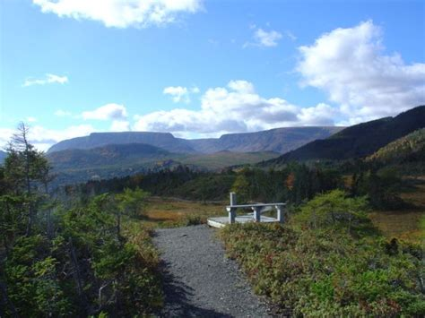 Cabins For Rent In Gros Morne National Park by Chalet Retreat In The Of Gros Morne Vrbo