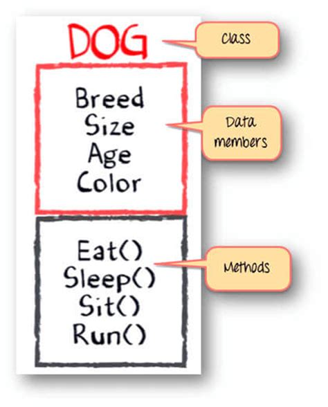 color class java what is class and object in java