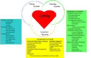Nursing theories betty neuman s systems model
