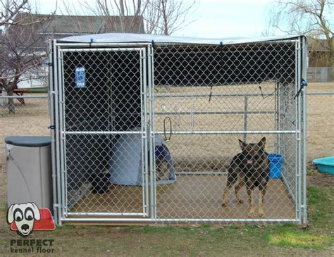 comfort kennels sheltered with a wind and sun block kennel floor