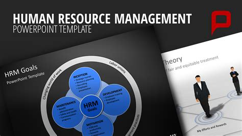 hr powerpoint templates effective human resource management with powerpoint