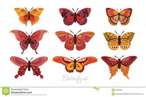 Decorative Butterflies by Set Of Decorative Vector Butterflies Stock Vector Image 66493287