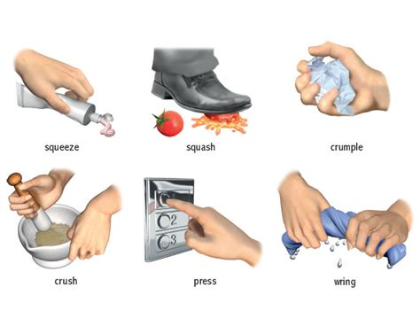 Squezzme It wring verb definition pictures pronunciation and usage