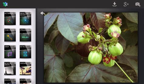 snapseed for android snapseed app arrives for android goes free for iphone and