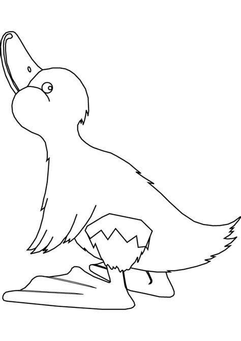 To Print This Handout Please Click On The Image Below Duckling Coloring Pages