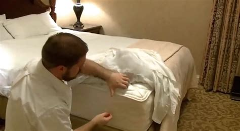 bed bug check how to check your hotel room for bed bugs business insider