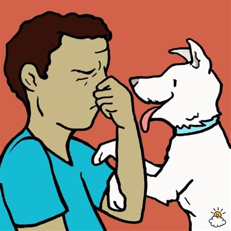 causes of bad breath in dogs canine bad breath can actually be a sign of this disease i had no idea