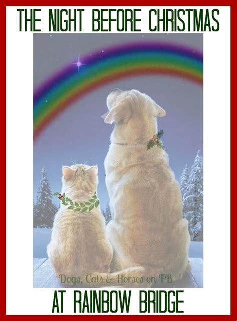twas  night  christmas   rainbow bridge rainbow bridge dogs pet grief