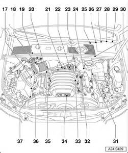 vw beetle cooling system diagram vw free engine image
