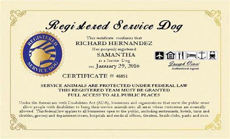 Service Dog Certificate Template 2017 Exle Service Dog Certificate California An Id Badge Service Animal Certificate Template