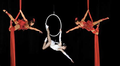 Aerial Hoop Company   Corporate Entertainers