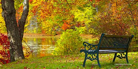 park bench scene autumn bench connecticut david balyeat photography