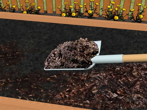 composting oak leaves how to compost leaves with pictures wikihow