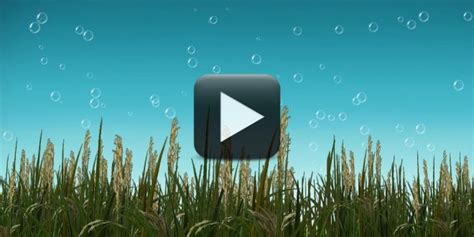 background design animated nature free nature background video with cool bubbles animation