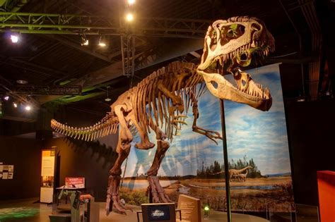 at perot museum tlm