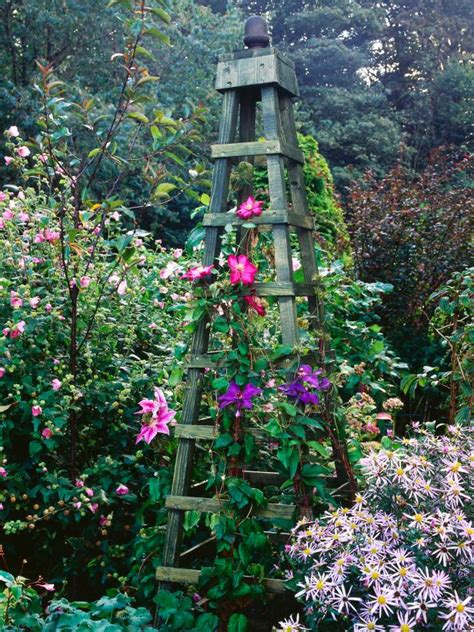 make an obelisk for climbing plants hgtv