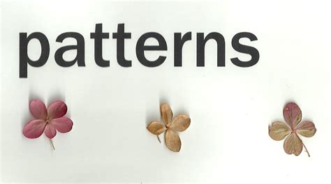 pattern other words the word patterns an exploration of the imagination