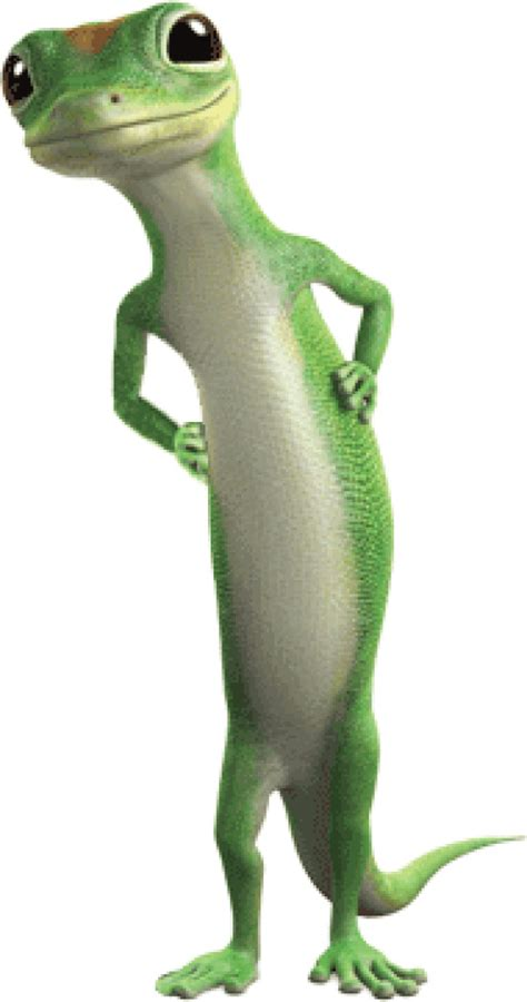 geico gecko commercials video who let that damn geico gecko near our majestic