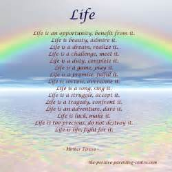 This the indisputable truth about quot living happy life picture