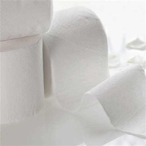 soft quilted toilet paper  ply   eden