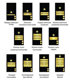 file commissioned officer rank structure of the bulgarian