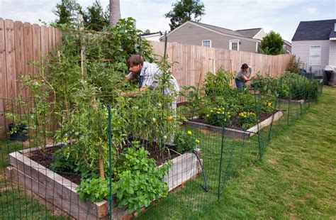 How To Lay Out A Vegetable Garden Gardening Archive Bonnie Plants