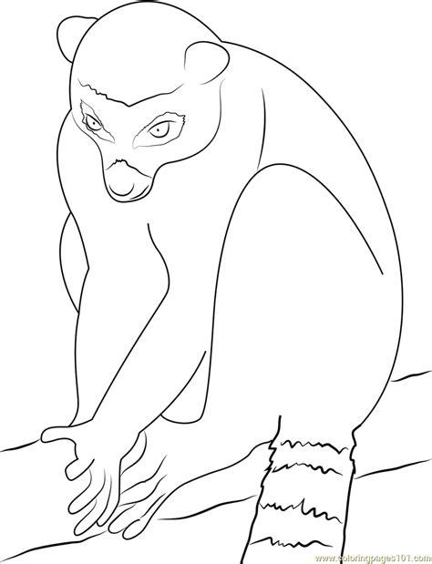 Lemur Coloring Pages Lemur Coloring Page
