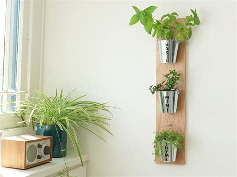 diy wall garden    rent  center