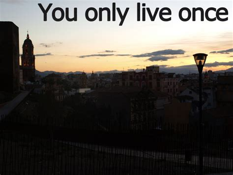 live once the gallery for gt you only live once
