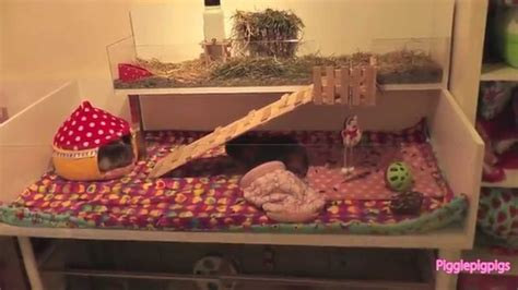 diy guinea pig house homemade guinea pig cages ideas images