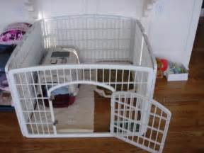 Crate Training puppy and small dog crate training set up