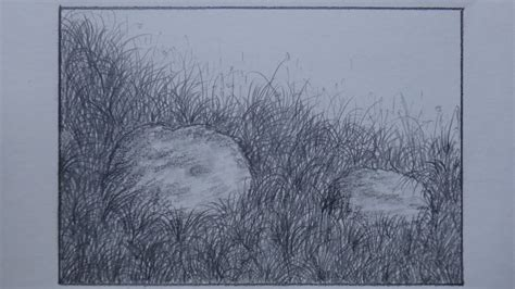 Sketches Grassy Land by How To Draw Grass Using Pencil For Landscape