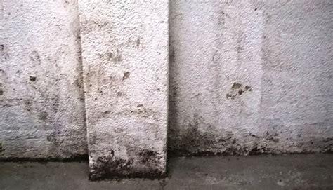 Fundament Trocken Legen by Fundamente Trockenlegen Ja Aber Wie Radonschutzs