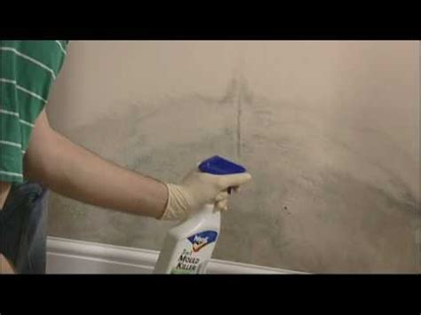 How To Prevent Mould In Bedroom by How To Remove Mould From Walls And Ceilings
