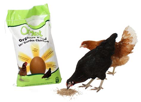 Organic omlet chicken feed 10kg chicken feed amp treats for chickens chicken coops and pet