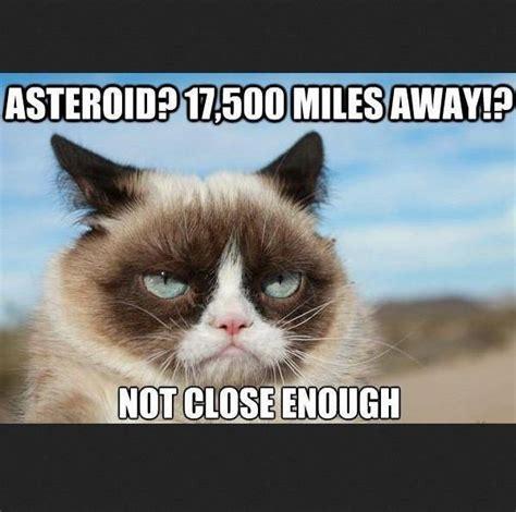 Best Grumpy Cat Meme - 50 most funny grumpy cat meme of all time