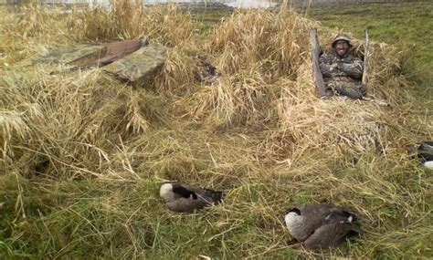 homemade goose hunting layout blinds diy duck goose layout blind idea diy do it yourself
