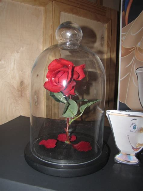 rose in glass enchanted rose glass dome realistic rose and rose